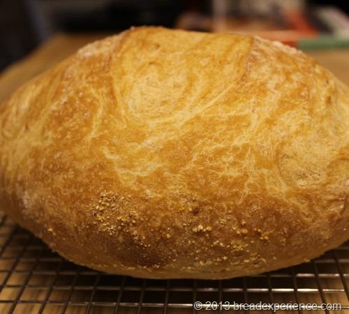 ABin5-master-loaf09