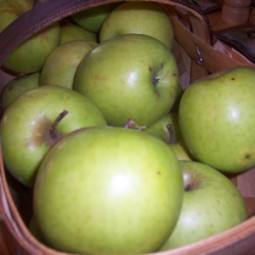 Making Jam: Apple Butter