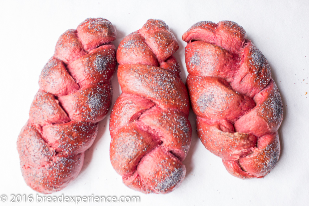 Sourdough Beet Challah