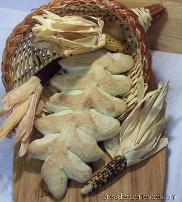 bread machine rolls recipe crusty