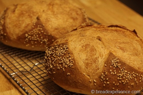 Cuban Bread About As Simple As It Gets Bread Experience