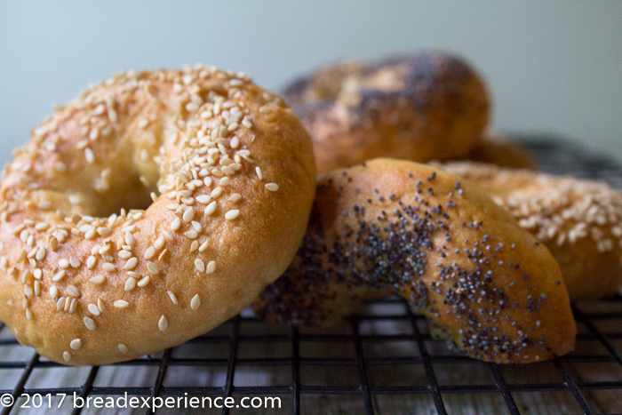 Gluten Free Kefir Water Bagels with Butterfly Gluten Free Flour Blend