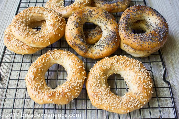 Gluten Free Kombucha Bagels