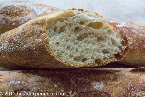 Sprouted Wheat Poolish Baguettes