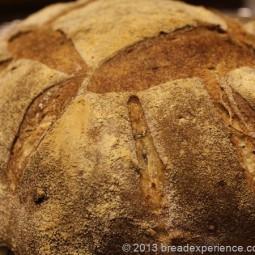 Roasted Potato & Rye Bread with Rosemary