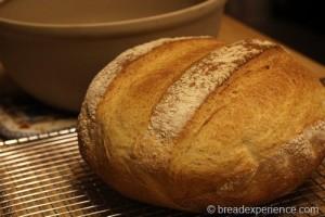 shepherds-bread_0031