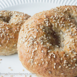 Sourdough Bagels with Sprouted Wheat