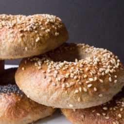 Sourdough Kombucha Bagels with Sprouted Wheat