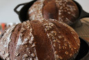 Ancient Grain Tartine with Spelt, Einkorn & KAMUT flours