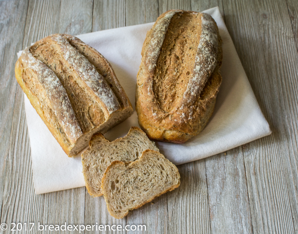 Velvety White Bean Bread with Rosemary and Sprouted Wheat