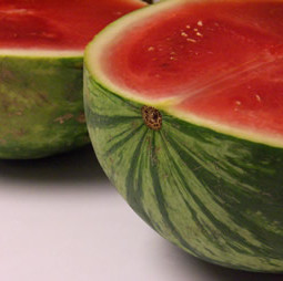 Making Jam: Watermelon Jelly
